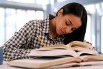 Latino student studying